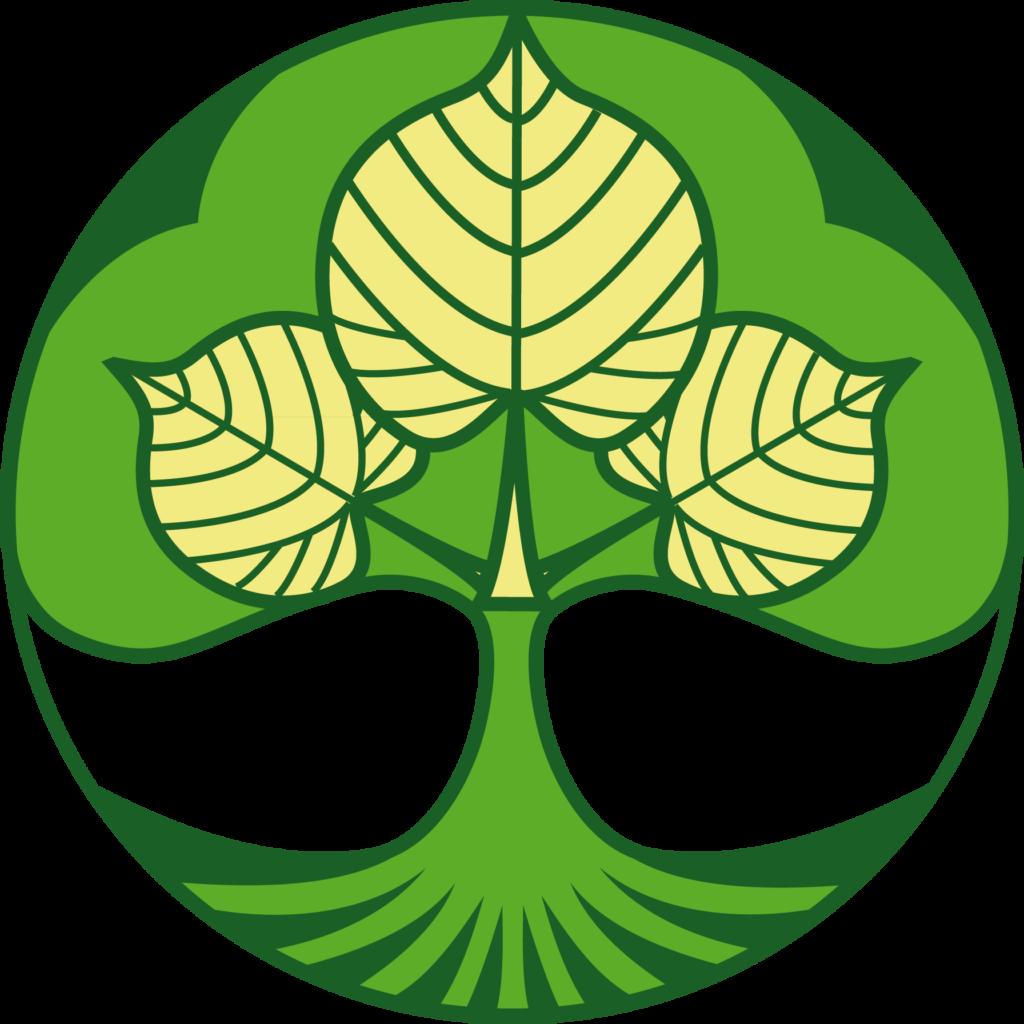 Logo_DruidskaSkupina