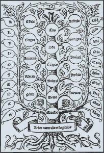 tree-of-porphyry