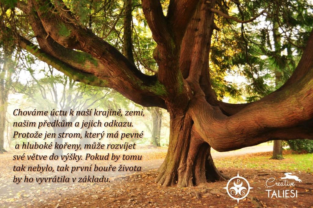 Pohanské citáty (1)