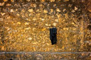 wall-1108427_1920