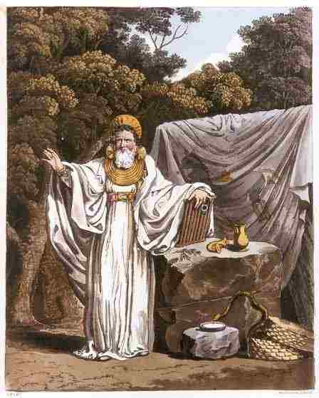 an_arch_druid_in_his_judicial_habit